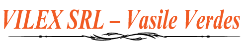 VILEX SRL – Vasile Verdes